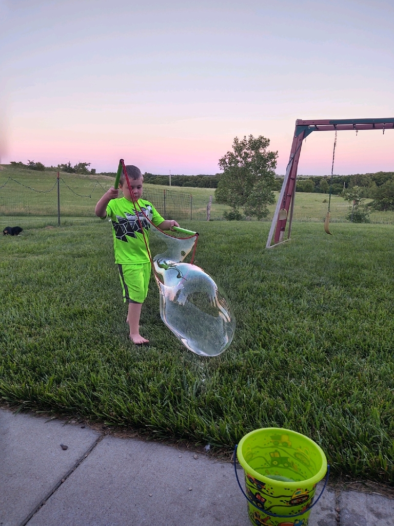 Tanner and giant bubbles.
