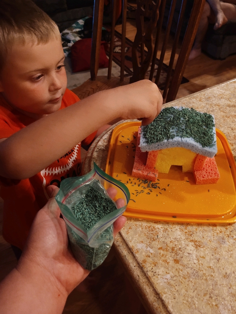 Building and seeding a grass house.